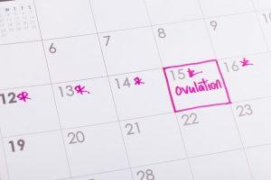La ovulación es el proceso fisiológico que consiste en la expulsión del ovulo maduro del ovario de la mujer. Está regulado por una serie de cambios a nivel de las hormonas que regulan todo el funcionamiento del ciclo.