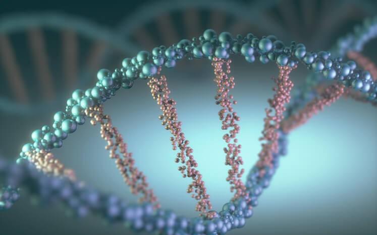 Utilidad de los Test Genéticos