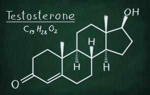 Es la principal hormona sexual masculina y en el hombre juega un papel clave en el desarrollo de sus tejidos reproductivos, como los testículos y la próstata, y también en la promoción de los caracteres sexuales secundarios.