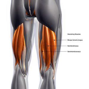 Una de las lesiones más frecuentes de los futbolistas son las microroturas en la zona de los isquiotibiales, concretamente en el bíceps femoral