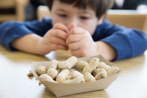La causa principal de la alergia alimentaria es común a todos los tipos de alergia, existe una respuesta alterada del sistema inmunitario, reconociendo el alimento como potencialmente dañino pero que, en realidad, son inofensivos, desencadenando una serie de respuestas inflamatorias que culminan con la liberación de histamina produciendo los clásicos síntomas de alergia. Si el cuerpo se ve expuesto una segunda vez a este mismo alimento, la memoria inmunológica actúa y provoca una nueva liberación de histamina con la consiguiente sintomatología.