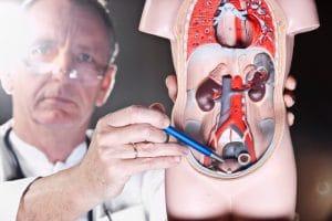 La operación de próstata es la cirugía que se realiza para retirar parte o la totalidad de la próstata, ya sea por su gran tamaño o por estar afectada de un tumor maligno.