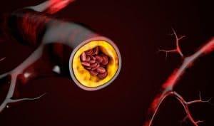 El colesterol tiene unos niveles óptimos, pero su presencia es esencial para la vida, ya que regula, en la membrana celular, la entrada y salida de sustancias